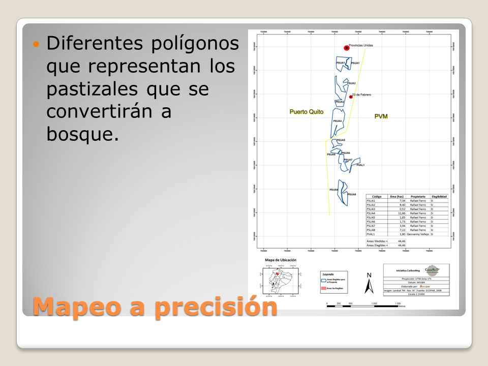Mapeo a precisión Diferentes polígonos que representan los pastizales que se convertirán a bosque.