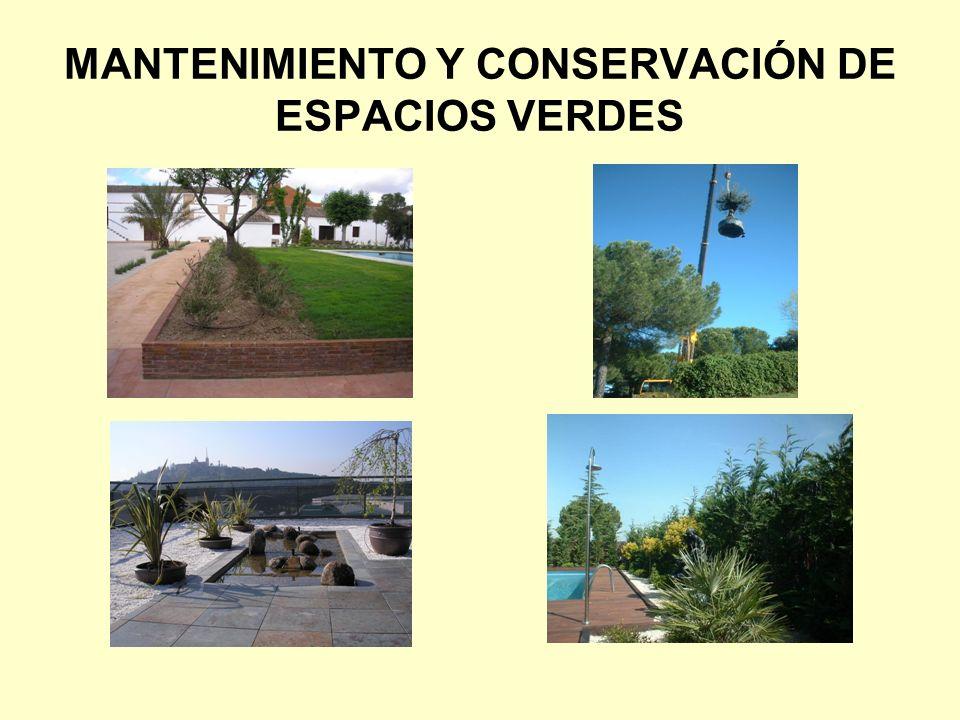 MANTENIMIENTO Y CONSERVACIÓN DE ESPACIOS VERDES