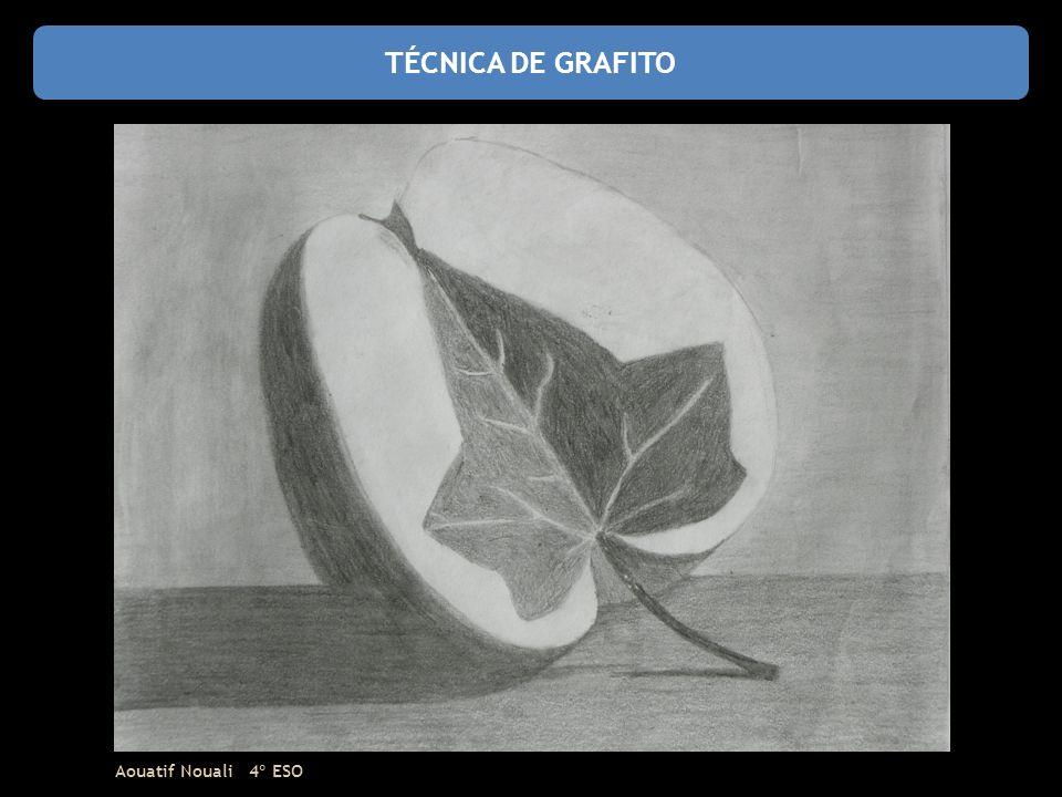 TÉCNICA DE GRAFITO Aouatif Nouali 4º ESO