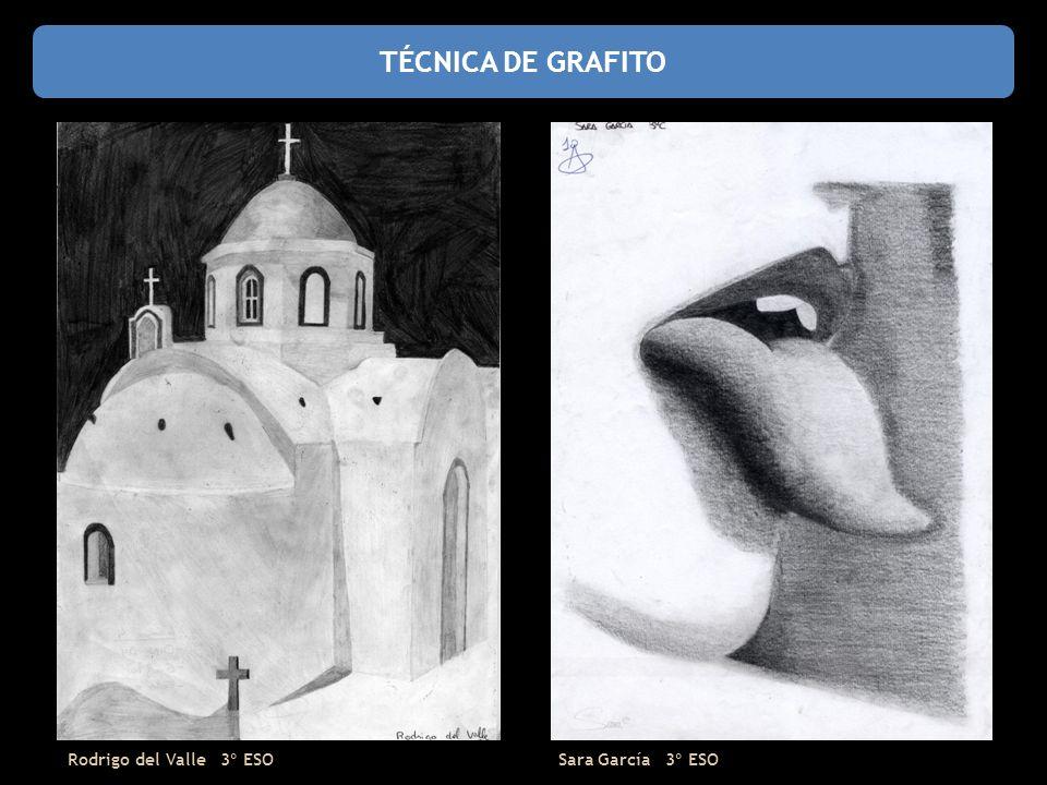 TÉCNICA DE GRAFITO Rodrigo del Valle 3º ESO Sara García 3º ESO
