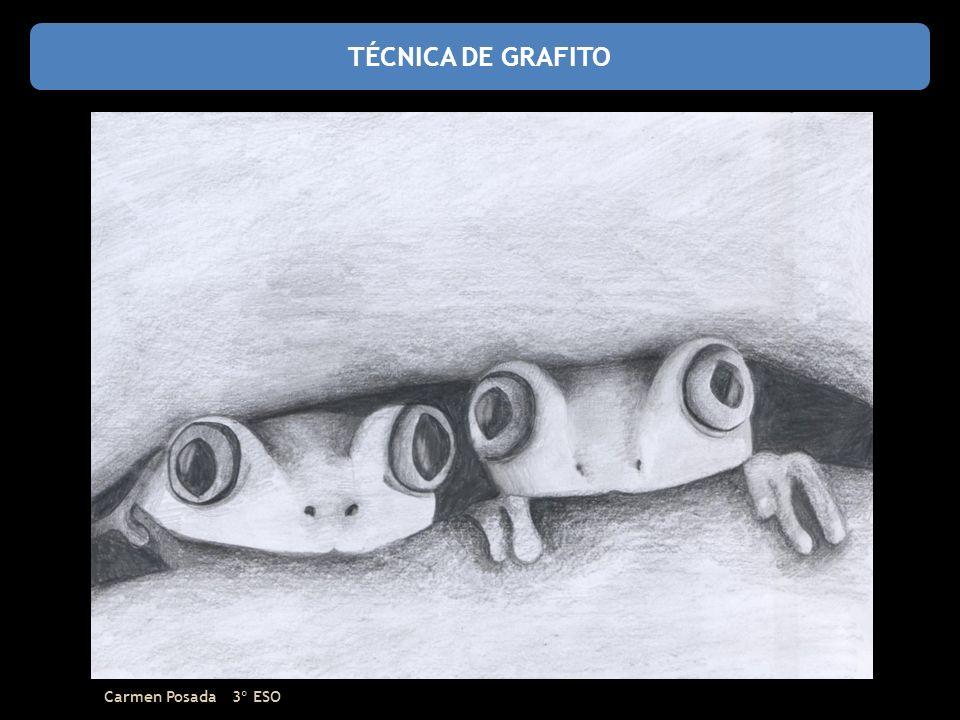 TÉCNICA DE GRAFITO Carmen Posada 3º ESO