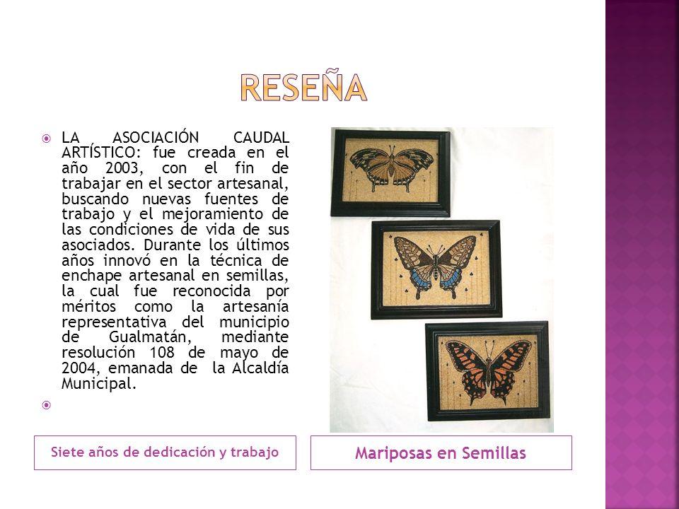 Siete años de dedicación y trabajo Mariposas en Semillas LA ASOCIACIÓN CAUDAL ARTÍSTICO: fue creada en el año 2003, con el fin de trabajar en el secto