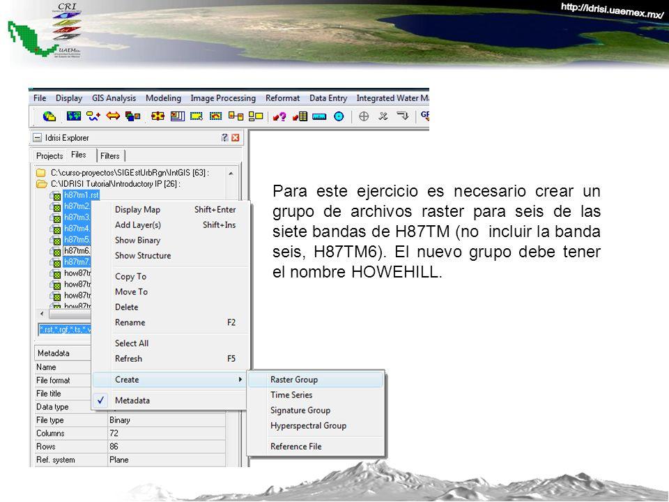Para este ejercicio es necesario crear un grupo de archivos raster para seis de las siete bandas de H87TM (no incluir la banda seis, H87TM6). El nuevo