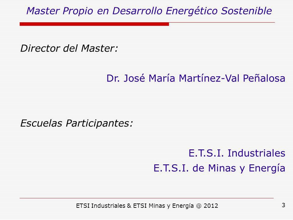 ETSI Industriales & ETSI Minas y Energía @ 2012 3 Director del Master: Dr.