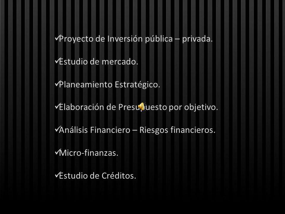 Proyecto de Inversión pública – privada. Estudio de mercado. Planeamiento Estratégico. Elaboración de Presupuesto por objetivo. Análisis Financiero –
