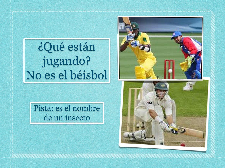 ¿Qué están jugando? No es el béisbol ¿Qué están jugando? No es el béisbol Pista: es el nombre de un insecto Pista: es el nombre de un insecto