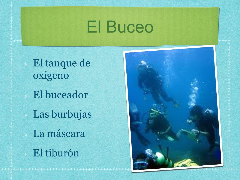 El Buceo El tanque de oxígeno El buceador Las burbujas La máscara El tiburón