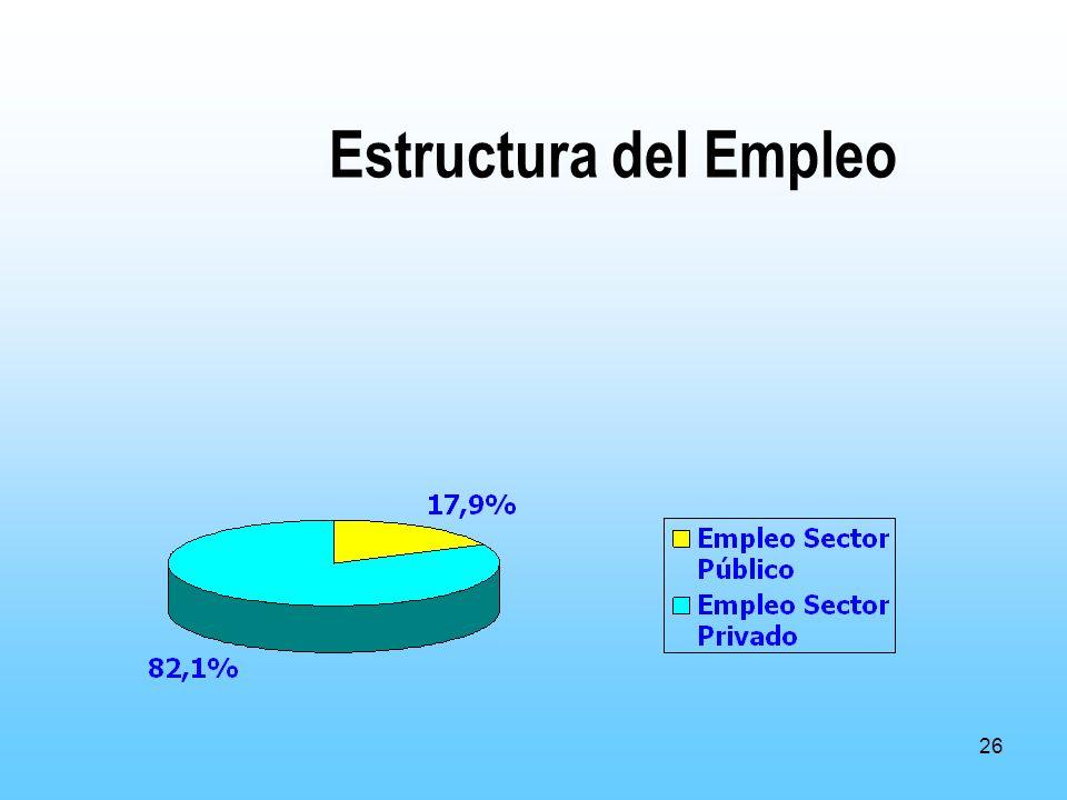 26 Estructura del Empleo
