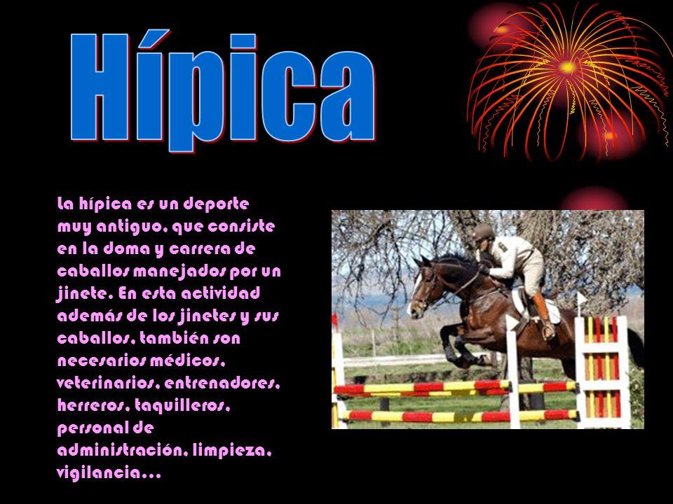 La hípica es un deporte muy antiguo, que consiste en la doma y carrera de caballos manejados por un jinete. En esta actividad además de los jinetes y