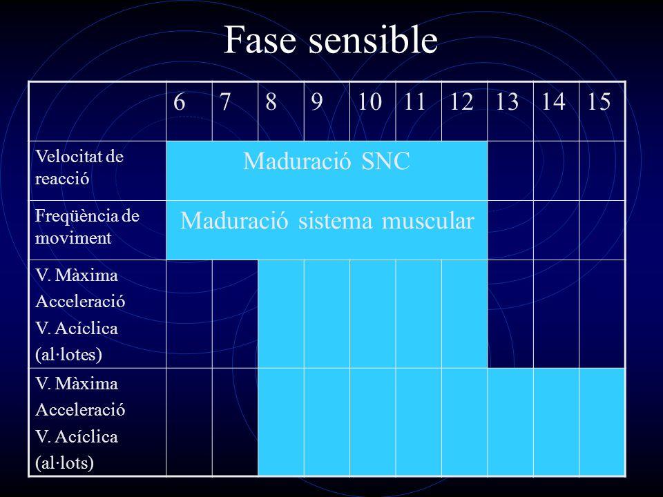 Fase sensible 6789101112131415 Velocitat de reacció Maduració SNC Freqüència de moviment Maduració sistema muscular V. Màxima Acceleració V. Acíclica