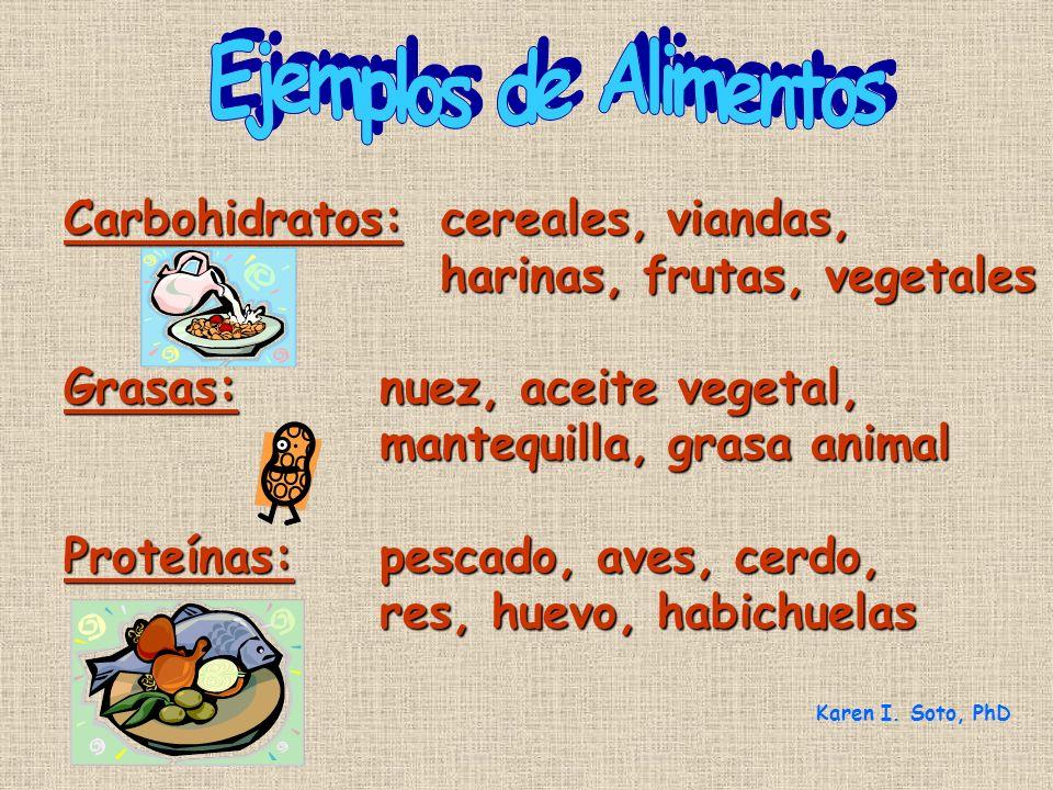 Carbohidratos: cereales, viandas, harinas, frutas, vegetales harinas, frutas, vegetales Grasas:nuez, aceite vegetal, mantequilla, grasa animal Proteín