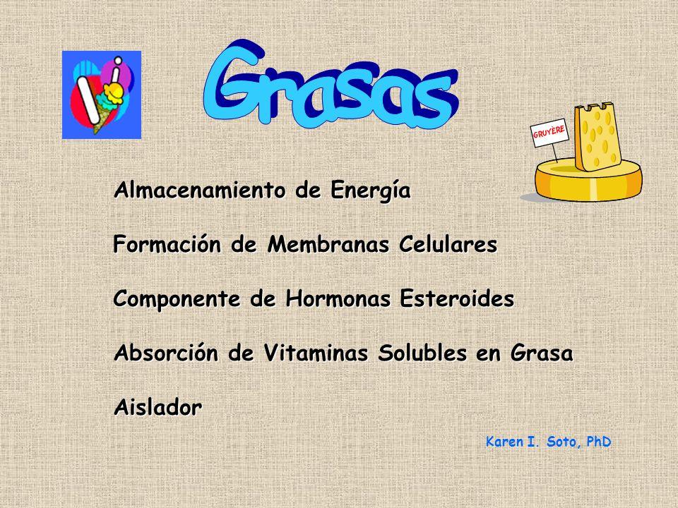 Almacenamiento de Energía Formación de Membranas Celulares Componente de Hormonas Esteroides Absorción de Vitaminas Solubles en Grasa Aislador Karen I.
