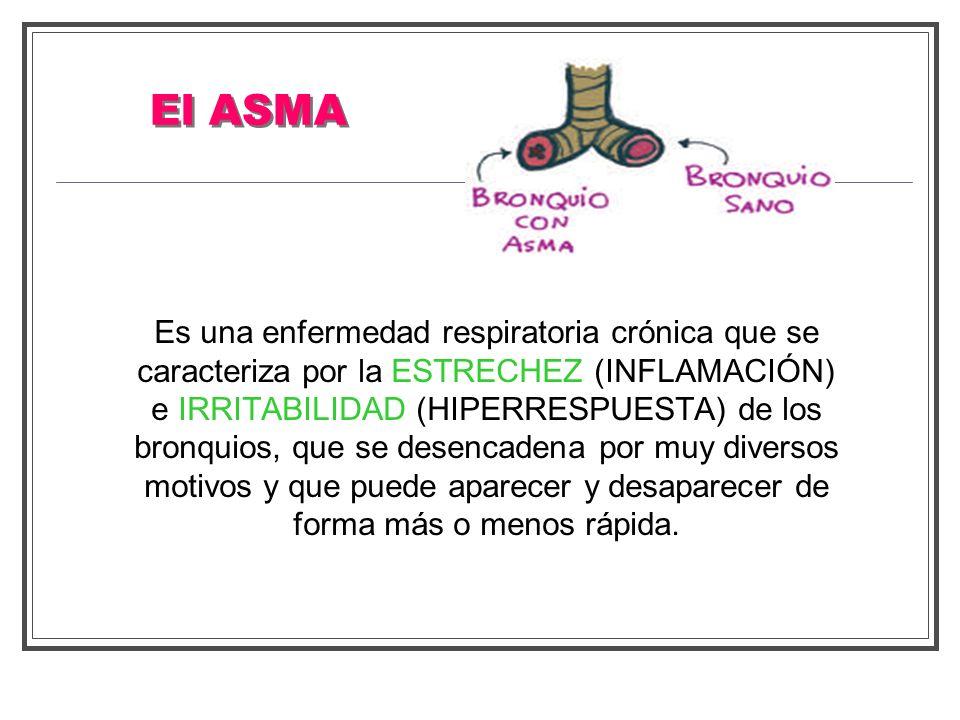 Es una enfermedad respiratoria crónica que se caracteriza por la ESTRECHEZ (INFLAMACIÓN) e IRRITABILIDAD (HIPERRESPUESTA) de los bronquios, que se des