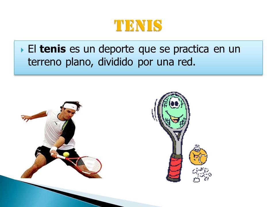 El tenis es un deporte que se practica en un terreno plano, dividido por una red.