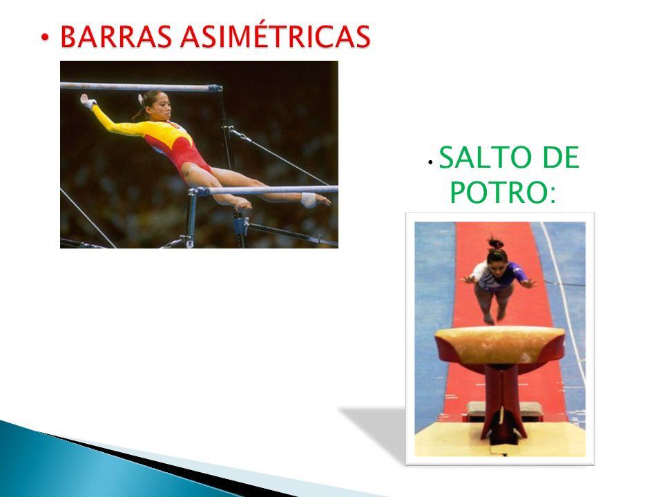 SALTO DE POTRO:
