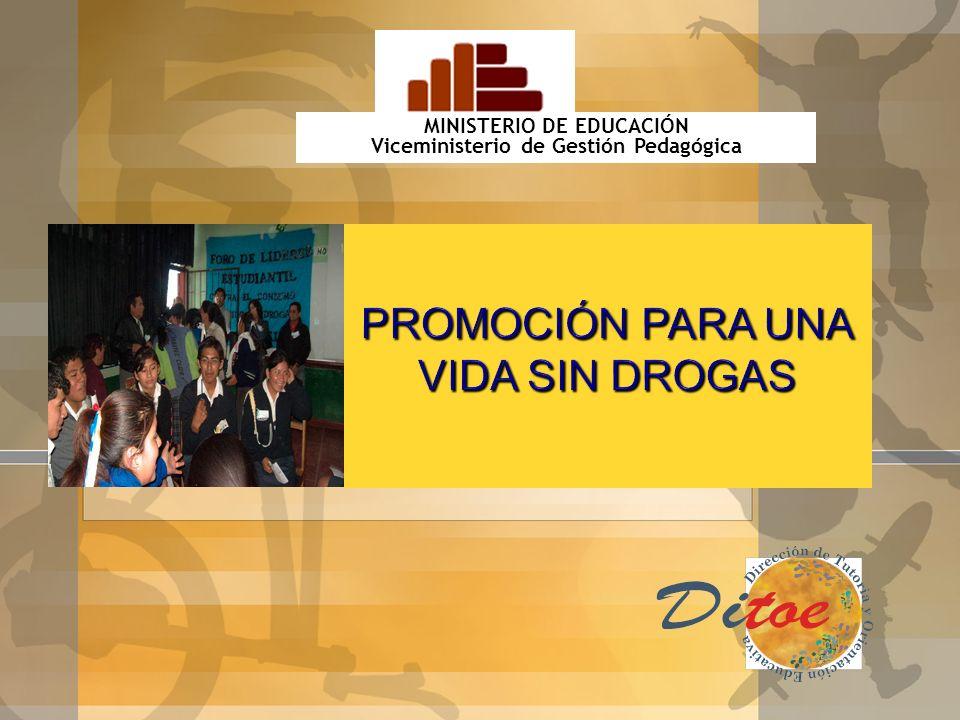 VMGP DITOE ÁREA DE TUTORÍA ÁREA DE PREVENCIÓN PSICOPEDAGÓGICA EQUIPOS Derechos Humanos y Convivencia Escolar Democrática Educación Sexual Promoción pa