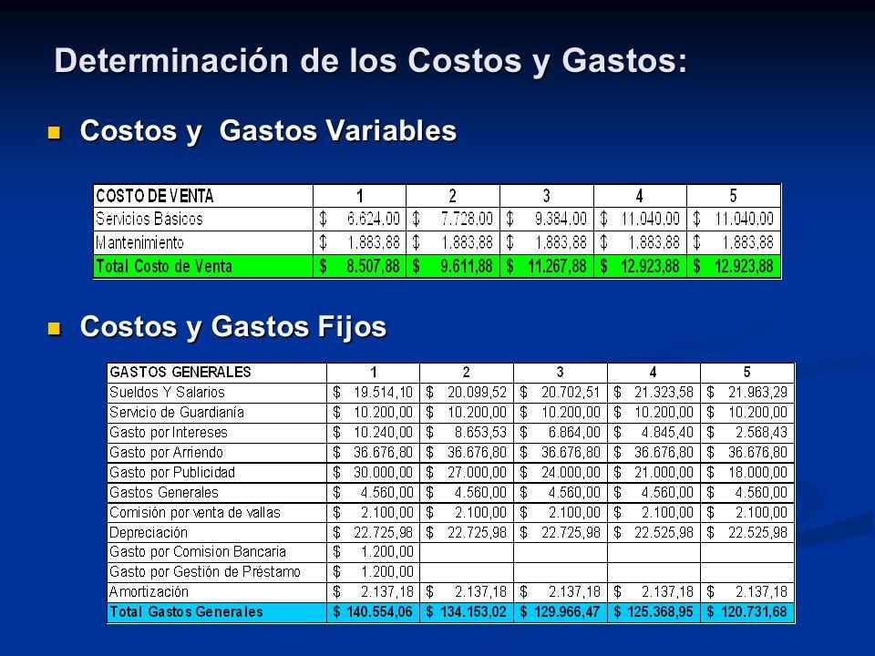 Determinación de los Costos y Gastos: Costos y Gastos Variables Costos y Gastos Variables Costos y Gastos Fijos Costos y Gastos Fijos