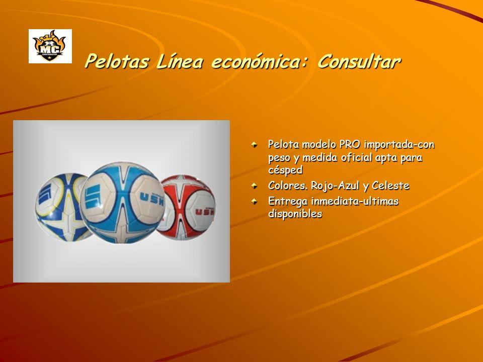 Pelotas Línea económica: Consultar Pelota modelo PRO importada-con peso y medida oficial apta para césped Colores. Rojo-Azul y Celeste Entrega inmedia