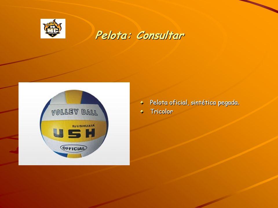 Pelota: Consultar Pelota oficial, sintética pegada. Tricolor