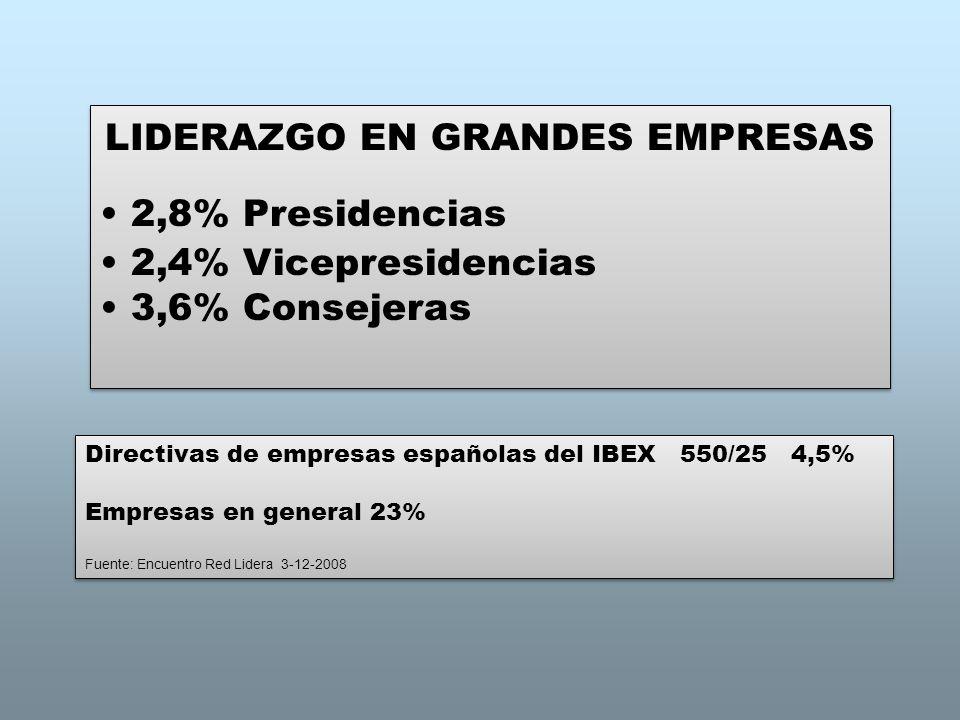 LIDERAZGO EN GRANDES EMPRESAS 2,8% Presidencias 2,4% Vicepresidencias 3,6% Consejeras LIDERAZGO EN GRANDES EMPRESAS 2,8% Presidencias 2,4% Vicepreside