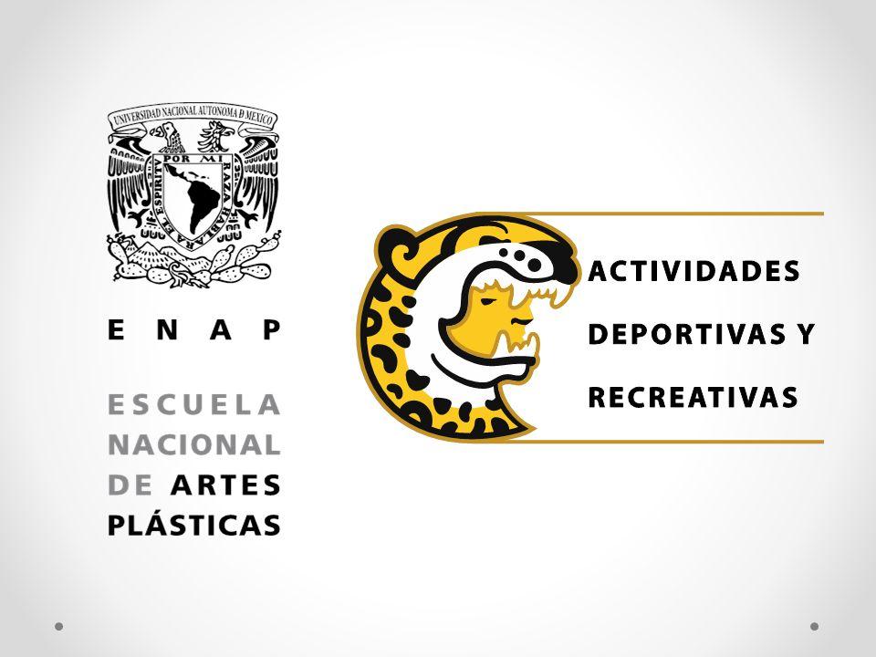 DEPORTE REPRESENTATIVO Se da seguimiento a los atletas de la ENAP que pertenecen a los equipos representativos de la UNAM.