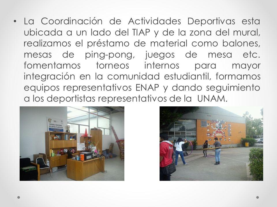La de deportes de la ENAP La coordinación de deportes de la ENAP Cumple con las 3 direcciones del deporte que tiene la Dirección General de Actividades Deportivas y Recreativas de la UNAM: Recreación Deporte Formativo Deporte Representativo
