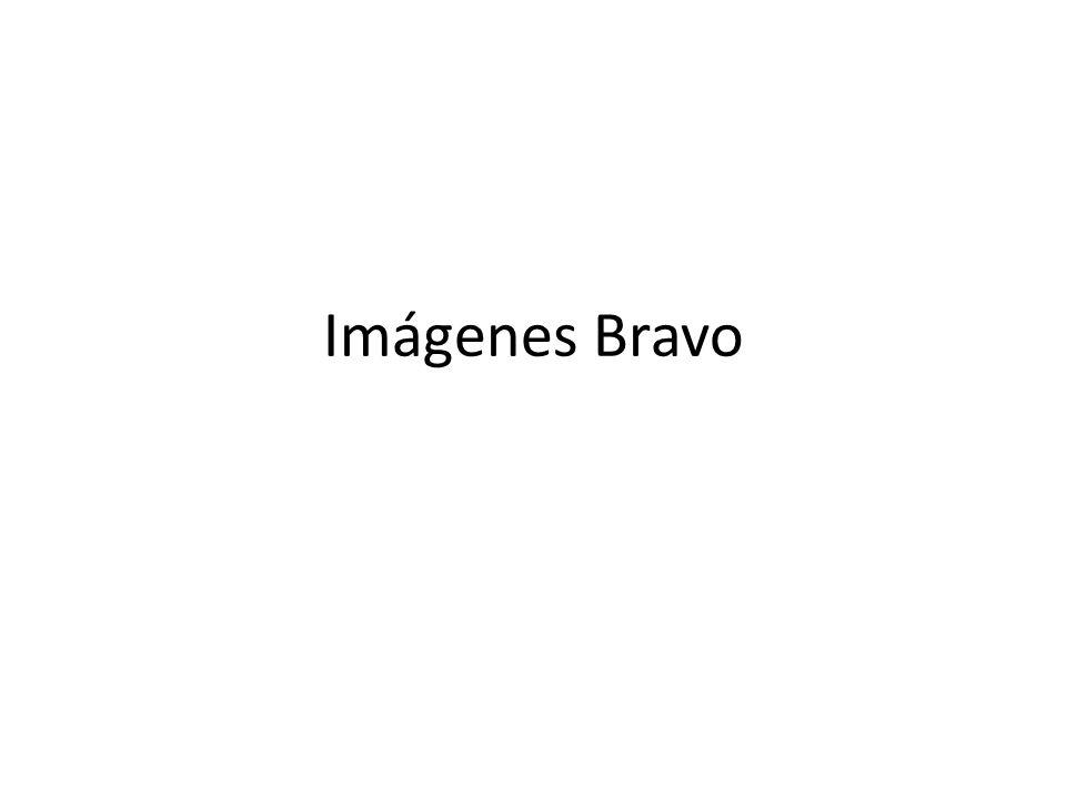 Imágenes Bravo