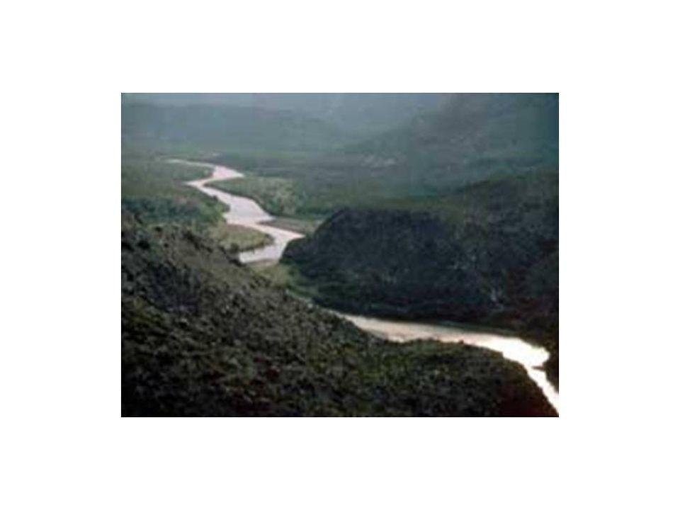 Escenarios para Cambio Climatico Cuenca del Rio Sonora Los escenarios que se corrieron en el programa calibrado mensualmente son los que se enlistan a continuación: – Disminución de 15% en la precipitación – Aumento de 3°C en la temperatura promedio – Disminución de 15% en la precipitación y Aumento de 3°C en la temperatura promedio – Disminución de 10% en la precipitación – Aumento de 2°C en la temperatura promedio – Disminución de 10% en la precipitación y Aumento de 2°C en la temperatura promedio – Disminución de 5% en la precipitación – Disminución de 5% en la precipitación y Aumento de 2°C en la temperatura promedio