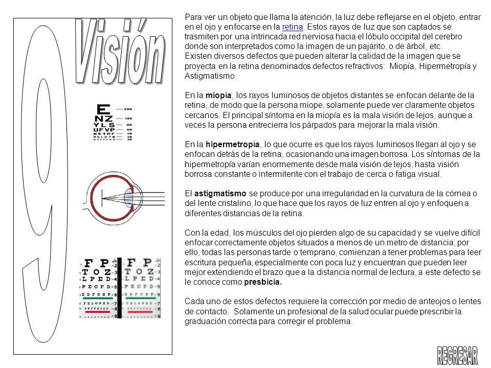 Para ver un objeto que llama la atención, la luz debe reflejarse en el objeto, entrar en el ojo y enfocarse en la retina. Estos rayos de luz que son c