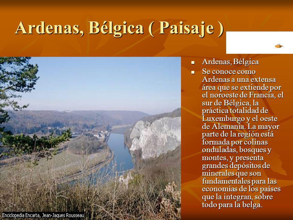 Ardenas, Bélgica ( Paisaje ) Ardenas, Bélgica Se conoce como Ardenas a una extensa área que se extiende por el noroeste de Francia, el sur de Bélgica,