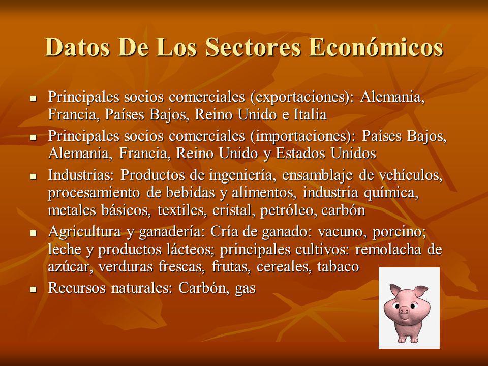 Datos De Los Sectores Económicos Principales socios comerciales (exportaciones): Alemania, Francia, Países Bajos, Reino Unido e Italia Principales soc