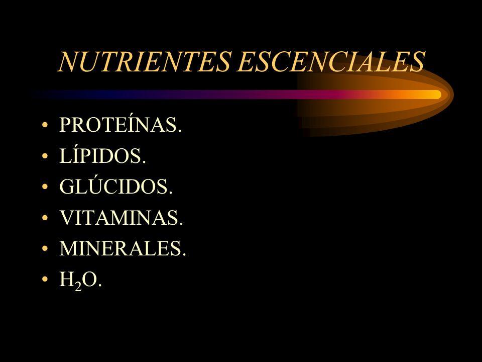 NUTRIENTES ESCENCIALES PROTEÍNAS. LÍPIDOS. GLÚCIDOS. VITAMINAS. MINERALES. H 2 O.