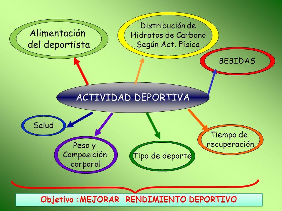 ACTIVIDAD DEPORTIVA Salud Alimentación del deportista Distribución de Hidratos de Carbono Según Act. Física Tipo de deporte Peso y Composición corpora