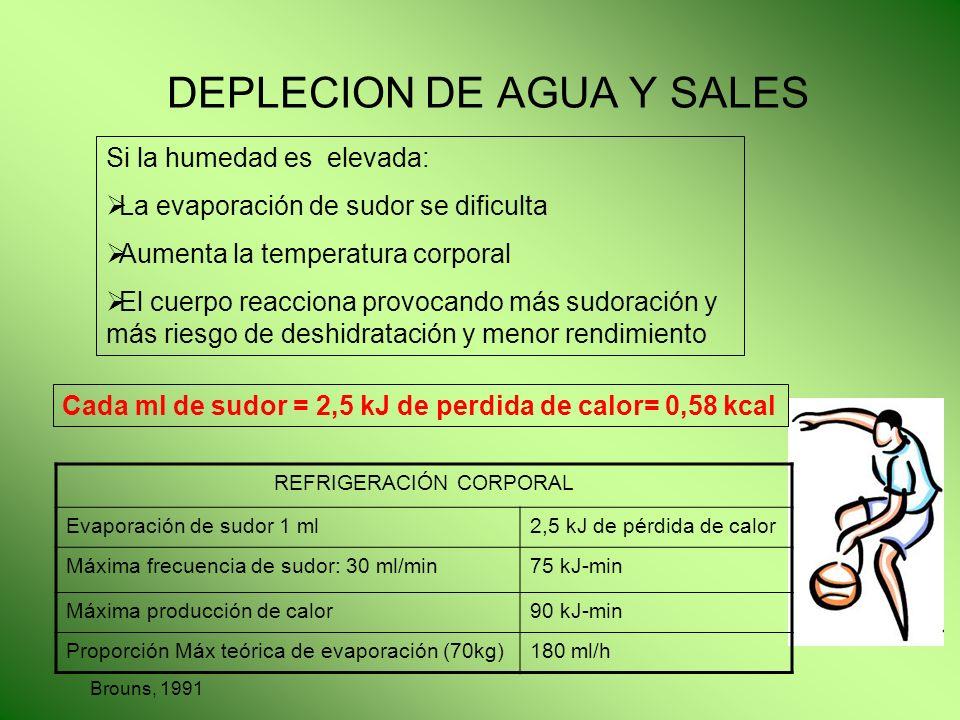 DEPLECION DE AGUA Y SALES Si la humedad es elevada: La evaporación de sudor se dificulta Aumenta la temperatura corporal El cuerpo reacciona provocand