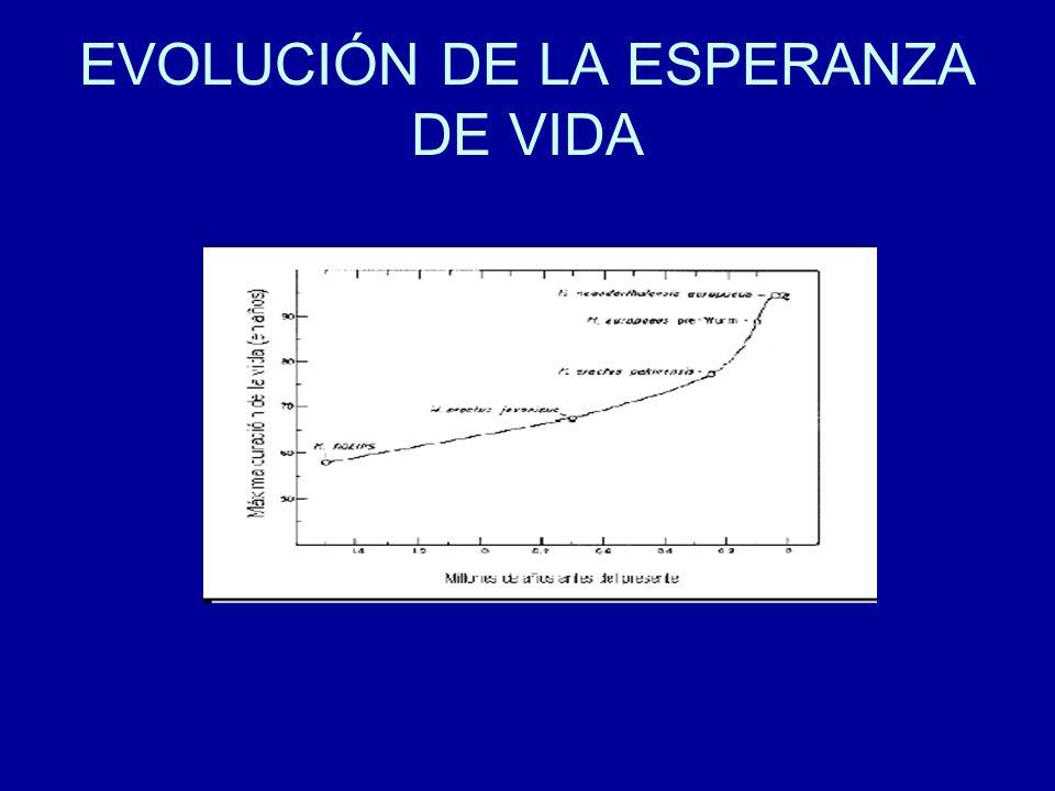 IV- PERSONALIDAD SOCIAL DEL ANCIANO.