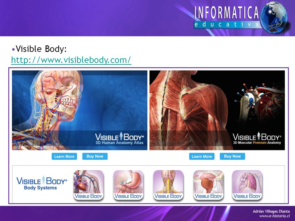 Visible Body: http://www.visiblebody.com/