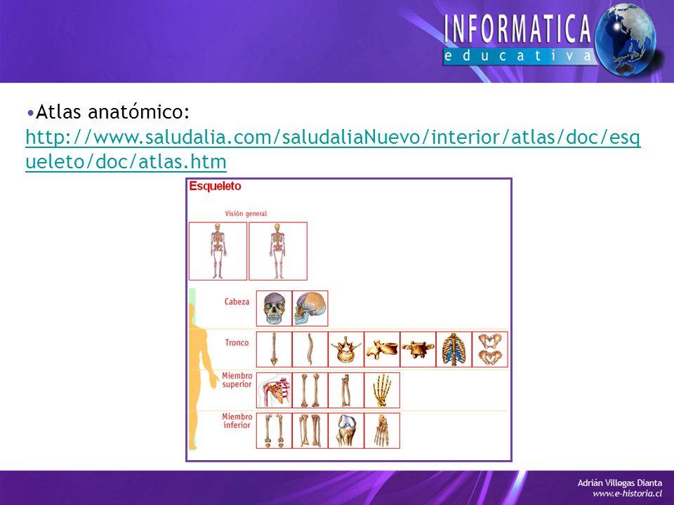 Atlas anatómico: http://www.saludalia.com/saludaliaNuevo/interior/atlas/doc/esq ueleto/doc/atlas.htm