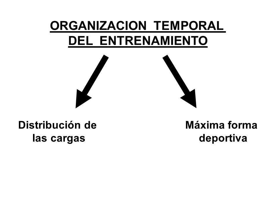 ORGANIZACION TEMPORAL DEL ENTRENAMIENTO Distribución de las cargas Máxima forma deportiva