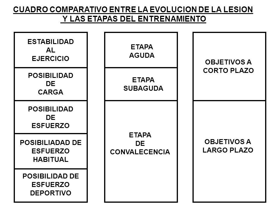 CUADRO COMPARATIVO ENTRE LA EVOLUCION DE LA LESION Y LAS ETAPAS DEL ENTRENAMIENTO ESTABILIDAD AL EJERCICIO POSIBILIDAD DE CARGA POSIBILIDAD DE ESFUERZ