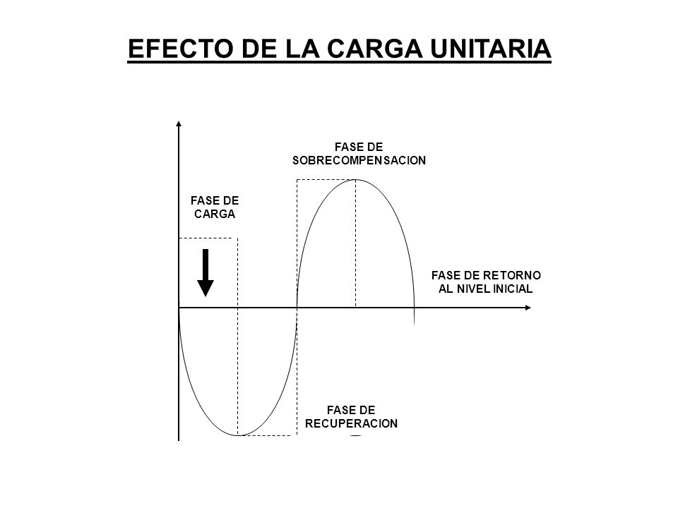 P PROCESO DEL ENTRENAMIENTO EN EL TIEMPO