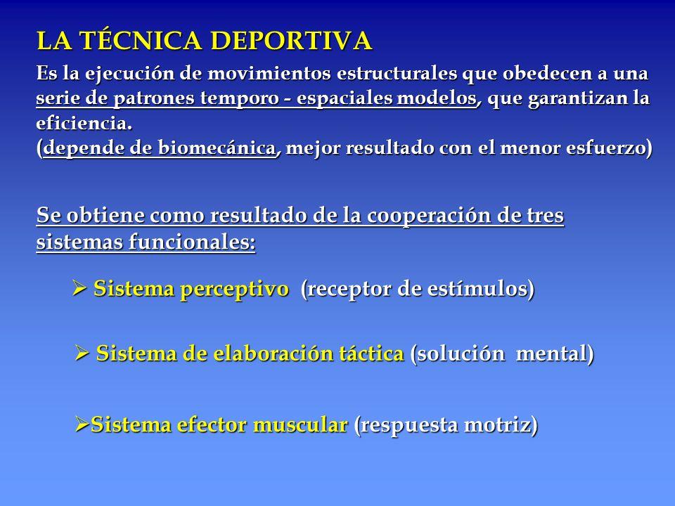 LA TÉCNICA DEPORTIVA Es la ejecución de movimientos estructurales que obedecen a una Es la ejecución de movimientos estructurales que obedecen a una s