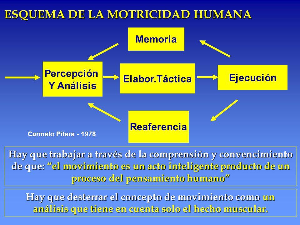 ESQUEMA DE LA MOTRICIDAD HUMANA Percepción Y Análisis Memoria Reaferencia Carmelo Pitera - 1978 Hay que trabajar a través de la comprensión y convenci