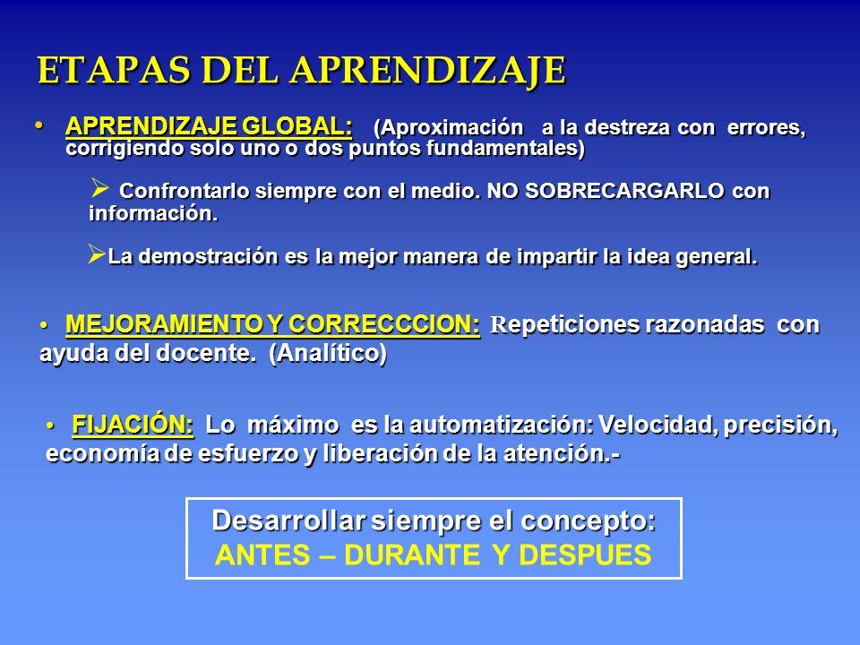 ETAPAS DEL APRENDIZAJE ETAPAS DEL APRENDIZAJE APRENDIZAJE GLOBAL: (Aproximación a la destreza con errores, corrigiendo solo uno o dos puntos fundament