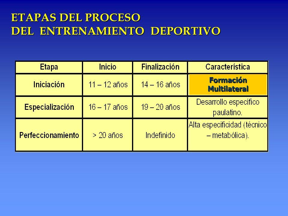 ETAPAS DEL PROCESO DEL ENTRENAMIENTO DEPORTIVO Formación Multilateral
