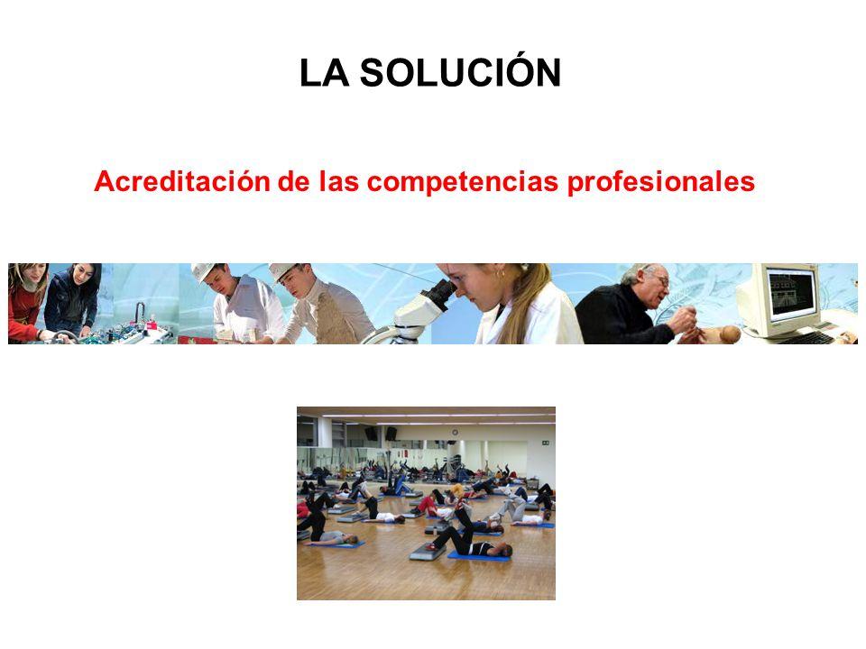 Acreditación de las competencias profesionales LA SOLUCIÓN