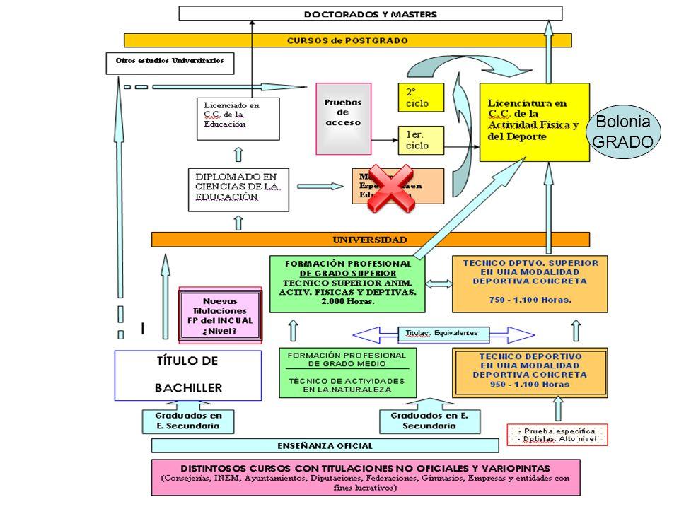 RD 1393/2007: las propias universidades crean y proponen las enseñanzas y títulos a impartir, sin necesidad de someterse a un catálogo oficial establecido por el Gobierno EEES Declaración Bolonia Armonización sistemas universitarios europeos Adquisición competencias ECTS GRADO MASTER DOCTOR Adscripción a rama conocimiento.