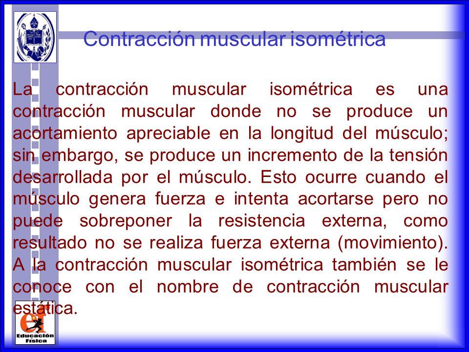 La contracción muscular concéntrica es aquella donde se aproximan las puntas de inserción del músculo y va en contra de la fuerza de gravedad; mientra