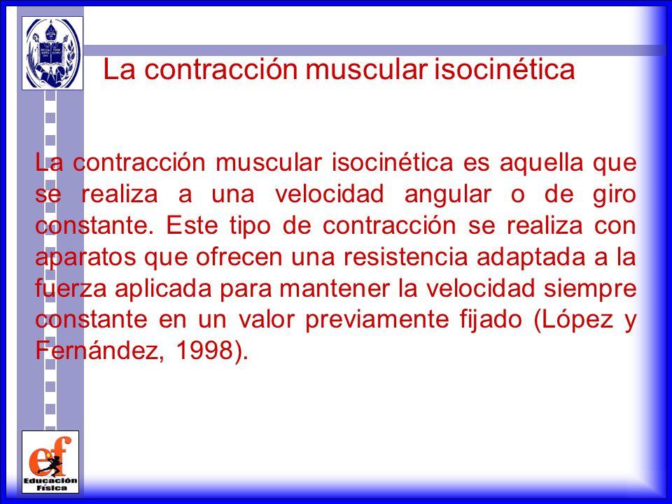 La contracción muscular isométrica es una contracción muscular donde no se produce un acortamiento apreciable en la longitud del músculo; sin embargo,