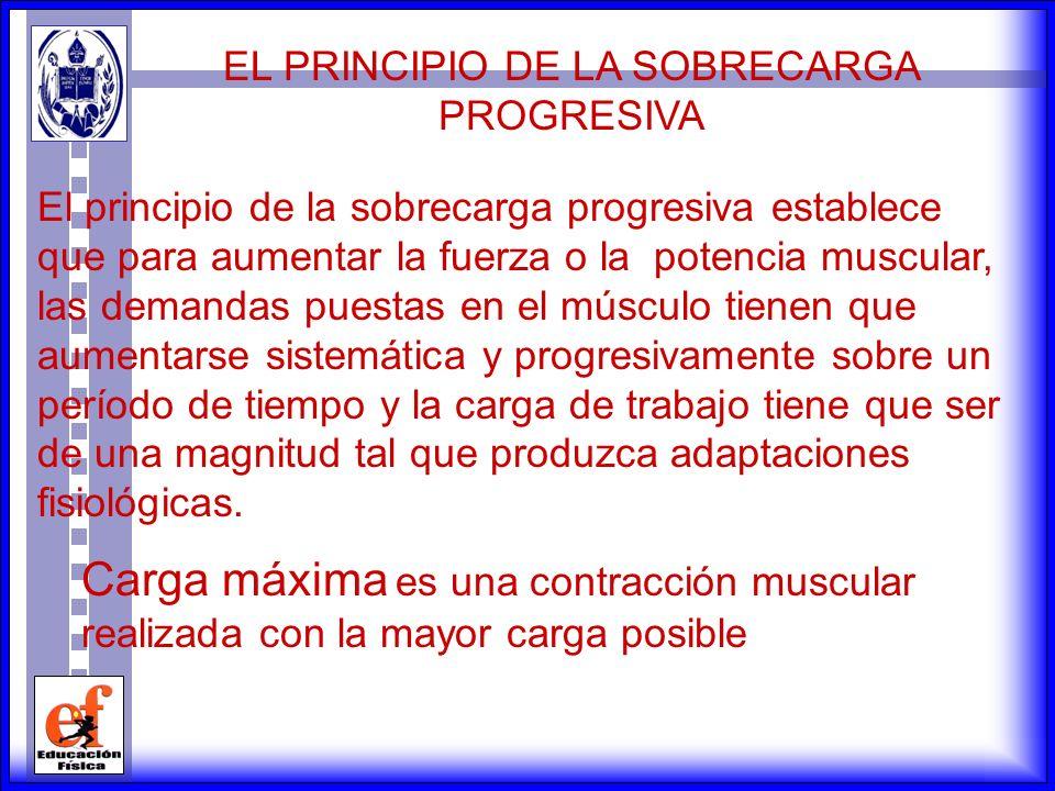 La contracción muscular isocinética es aquella que se realiza a una velocidad angular o de giro constante. Este tipo de contracción se realiza con apa