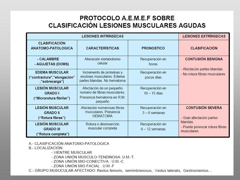 BIBLIOGRAFIA (1) Aagaard P.et al.